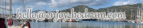 Email address of Enjoy Bodrum